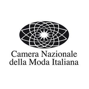 ialiana logo